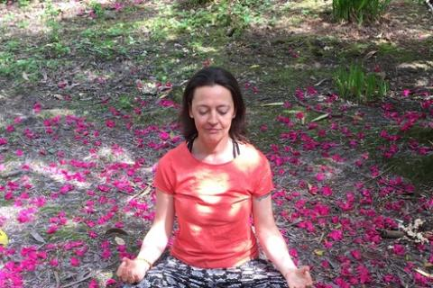 Mindful Meditation & Movement – Mindful Yoga & Shiatsu
